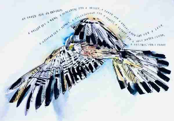 Flying kestrel with poem